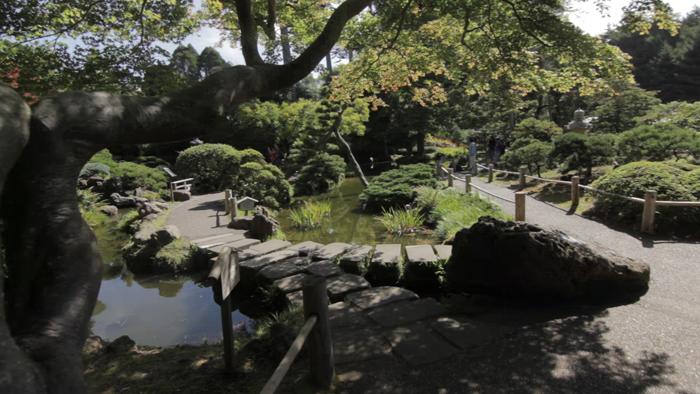 dax-victorino-films_san-francisco-japanese-tea-garden