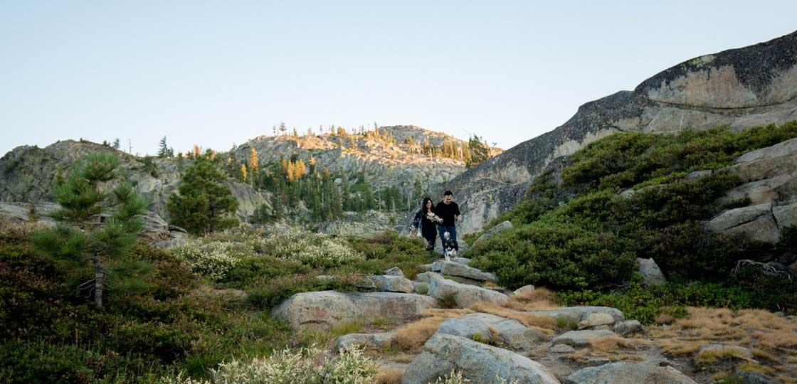 Dax-Pao_tahoe-siberian-husky-outdoors